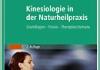 KInesiologie in der Naturheilpraxis