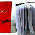 Kinesiologie - das Buch